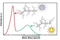 """Molar mass versus polymer solar cell performance: Highlighting the role of homocouplings"""
