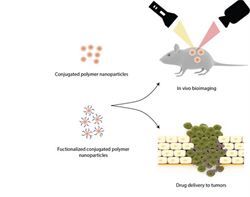 """Conjugated polymer nanoparticles for bioimaging"""
